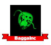 BaggaInc