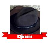 Djinsin