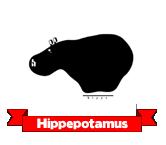 Hippepotamus/