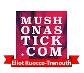 Eliot Ruocco-Trenouth