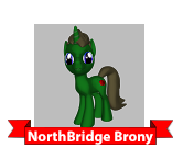 Northbridge Brony