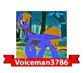 Voiceman3786