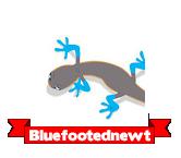 Bluefootednewt