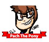 Pach The Pony